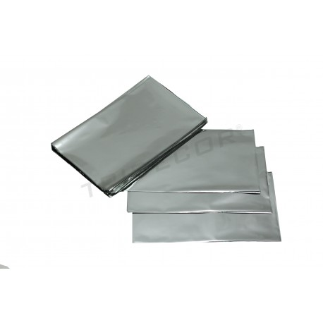 On plastic metallic silver 25x15cm 100 units